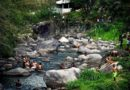 Parque Nacional do Itatiaia tem novidades no serviços de apoio ao turista