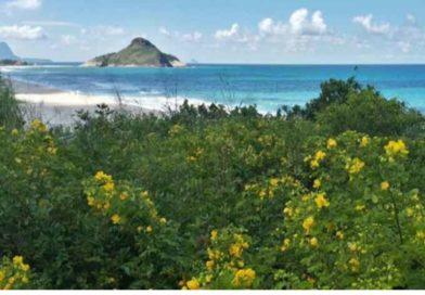 Praia da Macumba e Prainha passam por revitalização